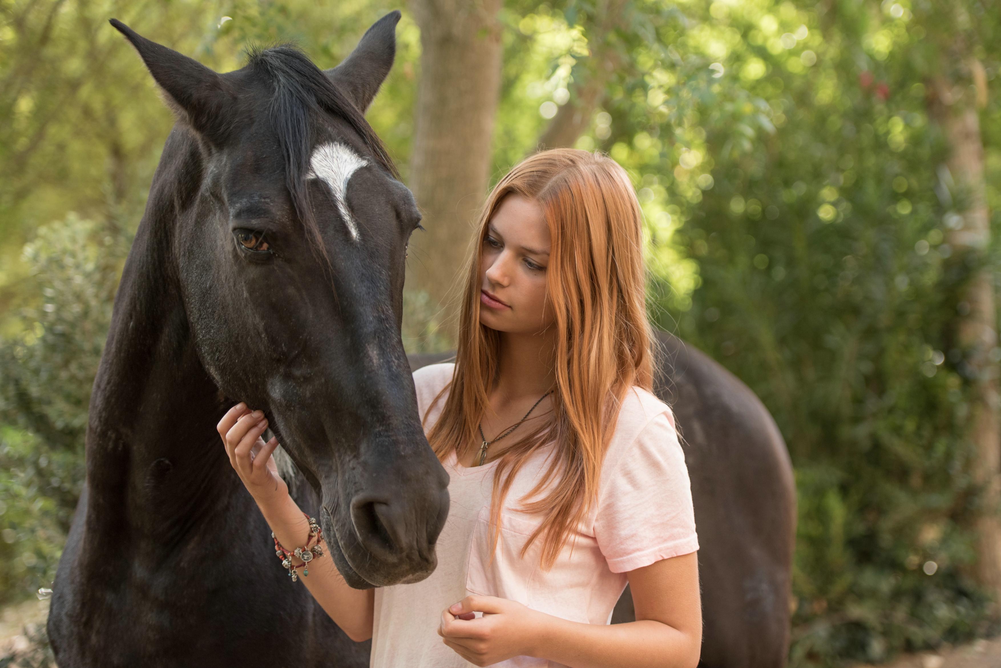 ostwind  die große weihnachtsverlosung  horse diaries